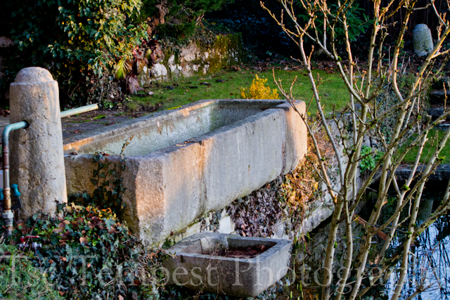 A garden trough near the Old Rolex factory, Biel, Switzerland