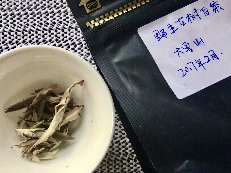 Yǐ Shēng Gǔ Shù Bái Chá, 野生古树白茶, Wild Ancient Tree White Tea;