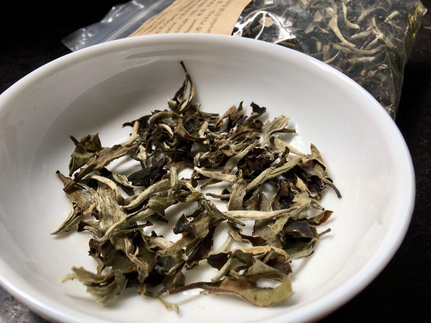 Xíng Jiàn Bái Mǔ Dan, 行健白牡丹, Xingjian White Peony